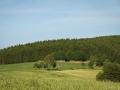 girkhausen-sommer-19