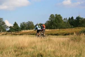 Bikearena Sauerland